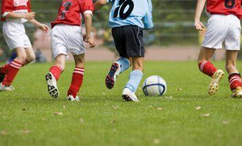 Sports insurance news
